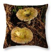 Two Mushrooms Throw Pillow