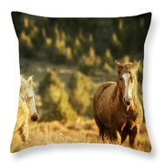 Two Mustangs Post Playtime At The Waterhole Throw Pillow