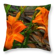 Two Orange Daylilies Throw Pillow