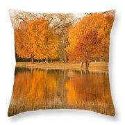 Two Orange Trees Throw Pillow