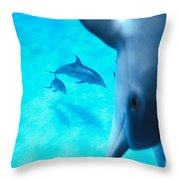 Two Pairs Of Dolphins Throw Pillow