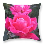 Two Pink Double Roses Throw Pillow
