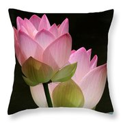 Two Pink Lotus Throw Pillow