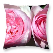 Two Pink Roses Throw Pillow