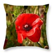 Two Poppies Throw Pillow