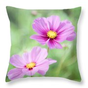 Two Purple Cosmos Flowers Throw Pillow