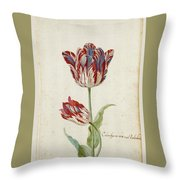 Two Red And White Tulips. Colombijn And Wit Van Poelenburg Throw Pillow