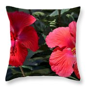Two Red Hibiscus With Border Throw Pillow