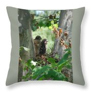 Two Red Shouldered Hawk Chicks Calling Mom  Throw Pillow