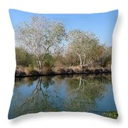 Two Reflected Throw Pillow