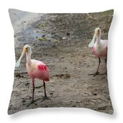 Two Roseate Spoonbills 2 Throw Pillow