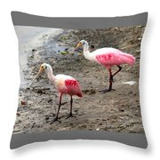 Two Roseate Spoonbills Throw Pillow