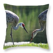 Two Sandhills By The Water Throw Pillow