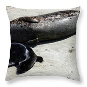 Two Seals Throw Pillow