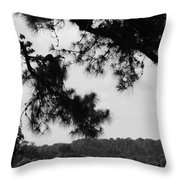 Two Ships That Pass... Throw Pillow