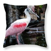 Two Spoonbills Throw Pillow