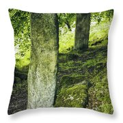Two Standing Stones Throw Pillow