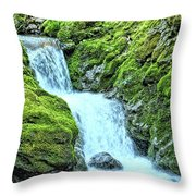 Two Steps Down Throw Pillow