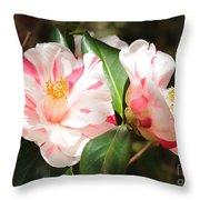 Two Striped Camellias Throw Pillow