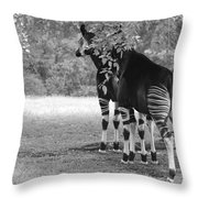 Two Stripes In Black And White Throw Pillow