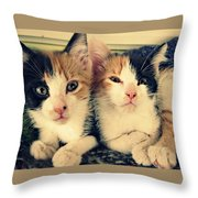 Two Tabby Cat Kittens Throw Pillow