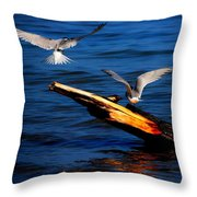 Two Terns Today Throw Pillow by Amanda Struz