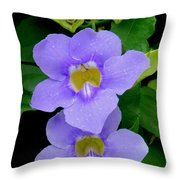 Two Thunbergia With Dew Drops Throw Pillow