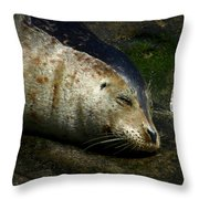 Two Tone Seal Throw Pillow