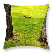 Two Trees And A Squirrel Throw Pillow