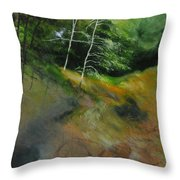 Two Trees In Light Throw Pillow by Harry Robertson