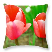 Two Tulips In Bloom  Throw Pillow
