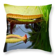Two Victoria Water Lilypads Throw Pillow