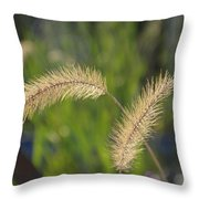 Two Way Sways Throw Pillow