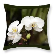 Two White Orchids Throw Pillow
