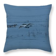 Two Whooper Swans In Flight Throw Pillow