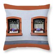 Two Windows In Schierstein Throw Pillow