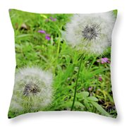 Two Wishes Throw Pillow