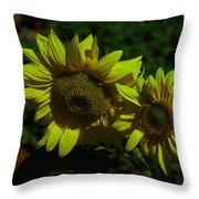 Two Yellow Beauties  Throw Pillow