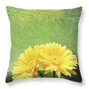 Two Yellow Gerber Daisies Throw Pillow