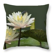 Two Yellow Water Lilies Throw Pillow