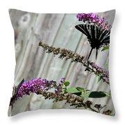 Two Zebra Swallowtail Butterflies Throw Pillow