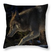 Twords The Sunrise Throw Pillow