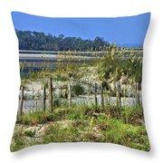 Tybee Island Inlet Throw Pillow