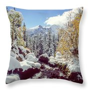 Tyndall Creek Throw Pillow