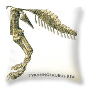 Tyrannosaurus Rex Skeleton Throw Pillow