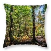 U Shaped Trees Cascade Mountain Ny New York Throw Pillow