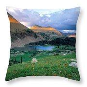 Uinta Wilderness Throw Pillow