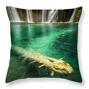 Ultimate Piece Of Mind Throw Pillow