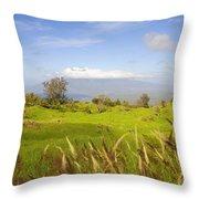Ulupalakua Landscape Throw Pillow