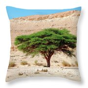 Umbrella Thorn Acacia, Negev Israel Throw Pillow